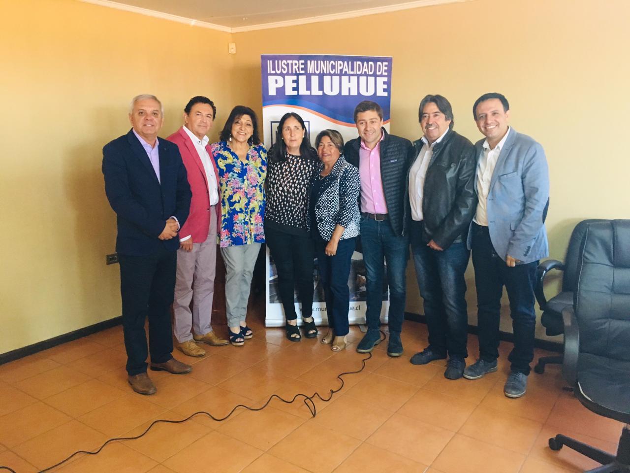 SESIÓN GOBIERNO REGIONAL DEL MAULE EN MUNICIPIO DE PELLUHUE.