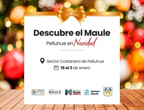 FERIA DESCUBRE EL MAULE PELLUHUE EN NAVIDAD.